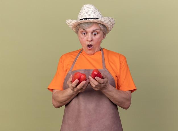 Verrast oudere vrouwelijke tuinman die een tuinhoed draagt en kijkt naar rode paprika's geïsoleerd op een olijfgroene muur met kopieerruimte