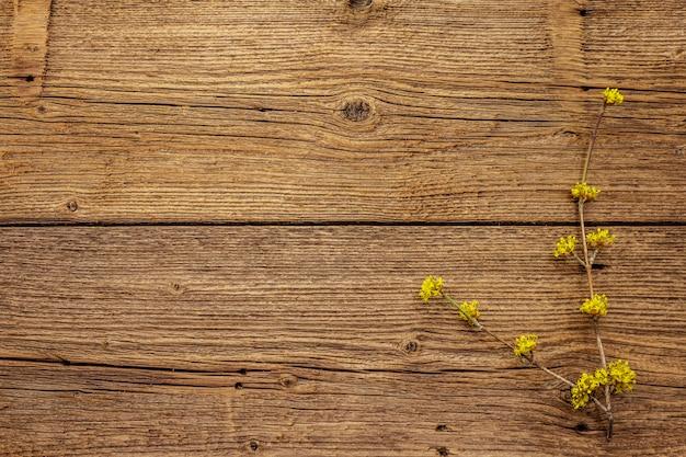 Vers bloeiende takjes kornoelje op vintage houten achtergrond. lente stemming concept, kaartsjabloon, behang, achtergrond