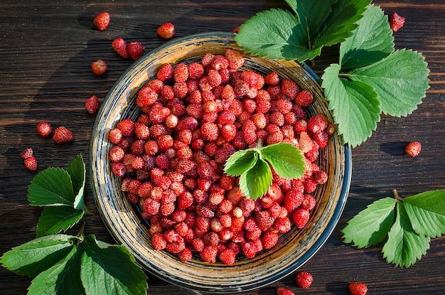 Vers gemengde wilde aardbeien in een kom