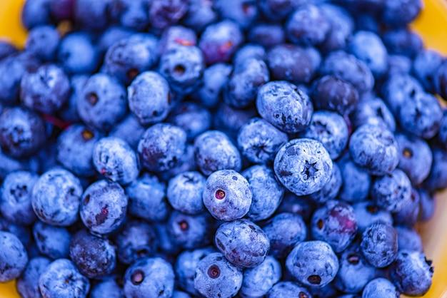 Vers geplukte bosbessen. gezonde voeding vitamines. zomer eten. zachte focus