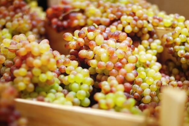 Vers geplukte druiven in houten kisten, close-up