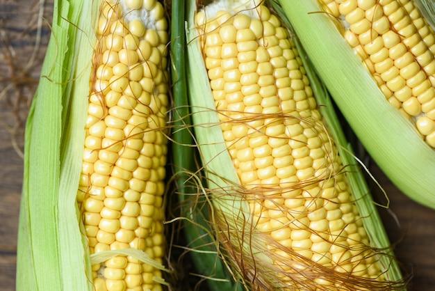 Vers graan op maïskolven en suikermaïsoren op de rustieke houten mening van de lijstbovenkant