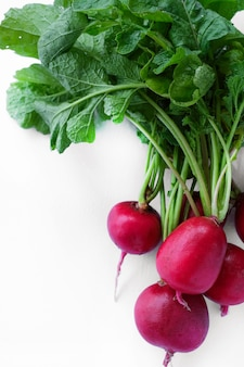 Vers radijs oogst geïsoleerd op wit. gezonde biologische voeding, groenten, landbouw. abstracte doos achtergrond geïsoleerd