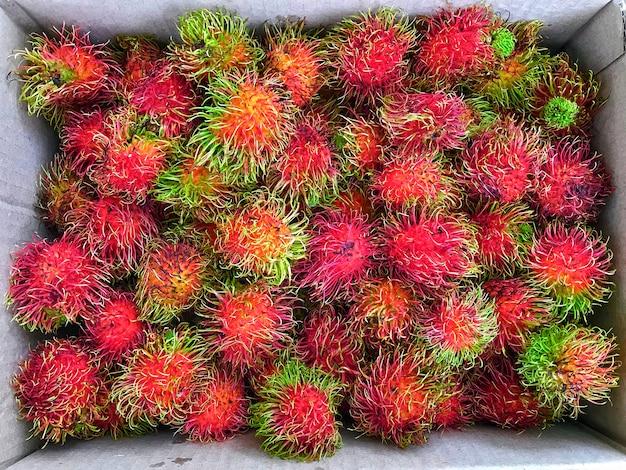 Vers rambutan tropisch fruit