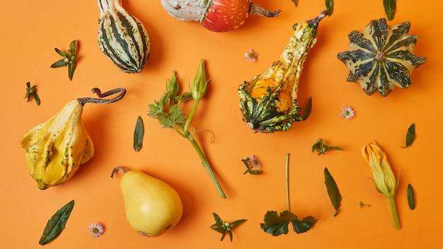 Verscheidenheid aan herfstpompoenen, bladeren en bloemen