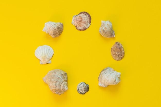 Verscheidenheid aan schelpen op een gele achtergrond, zomer zee achtergrond, plaats voor tekst in een cirkel, plat lag