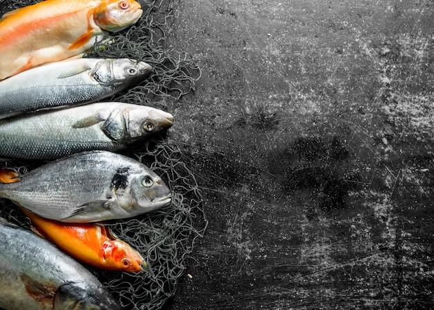 Verscheidenheid aan verse vis op donkere rustieke tafel