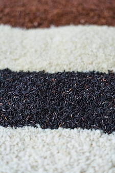 Verscheidenheid van ruwe rijst vage achtergrond