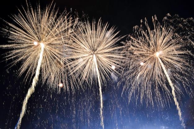 Verscheidenheids kleurrijk vuurwerk op de achtergrond van de nachthemel. groet met gouden flitsen.