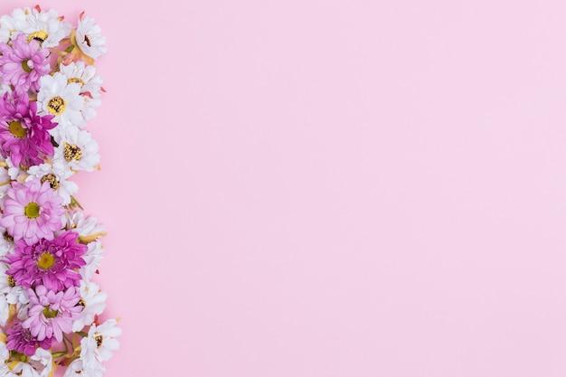 Verschillende behandelde bloemen op roze achtergrond