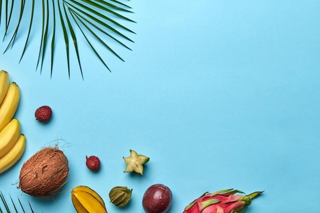 Verschillende exotische vruchten en palmblad geïsoleerd