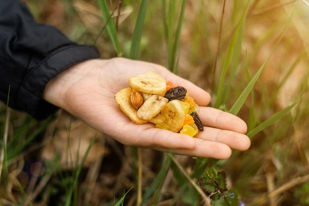 Verschillende gedroogde vruchten, noten in een vrouwelijke hand op een achtergrond van groen gras. snack tijdens de wandeling, wandelen. gezond vegetarisch eten.
