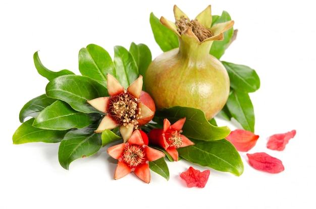 Verschillende granaatappels met bladeren geïsoleerd op een witte achtergrond Premium Foto