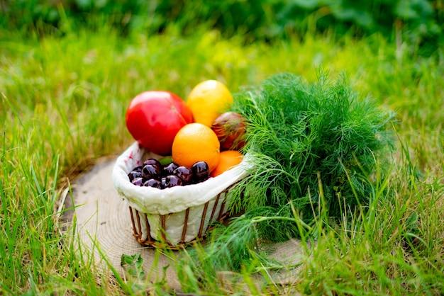 Verschillende groenten en fruit oogsten in de slechte mand op de grond