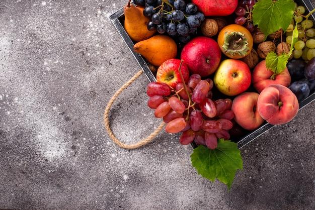 Verschillende herfstvruchten