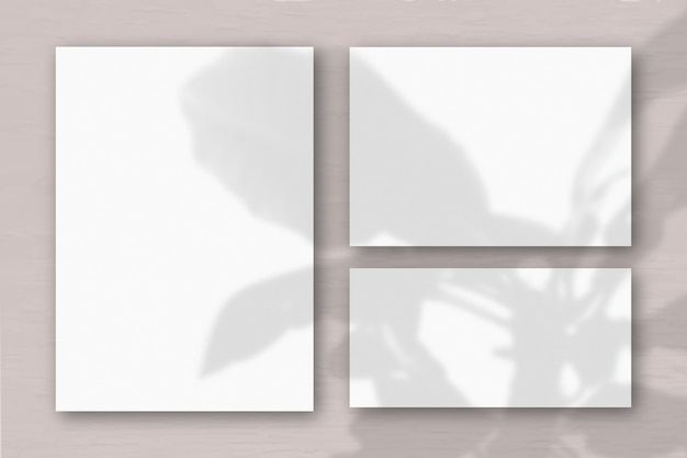 Verschillende horizontale en verticale vellen wit getextureerd papier op de achtergrond van een roze muur. natuurlijk licht werpt schaduwen van de boom van geluk. plat lag, bovenaanzicht. horizontale oriëntatie