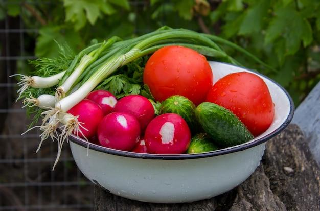 Verschillende inlandse groenten op witte houten achtergrond. selectieve aandacht.