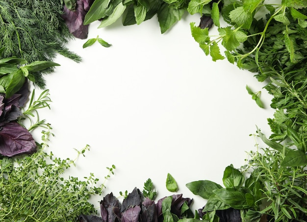 Verschillende kruiden op witte achtergrond