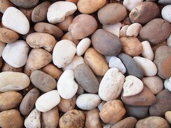 Verschillende pebble stenen textuur