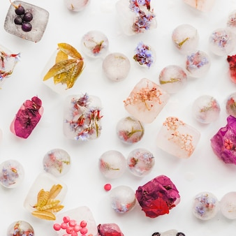 Verschillende planten en bessen in ijsblokken en ballen