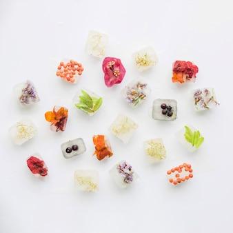 Verschillende planten en bessen in ijsblokken