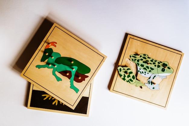 Verschillende soorten montessori-educatief materiaal voor gebruik op scholen