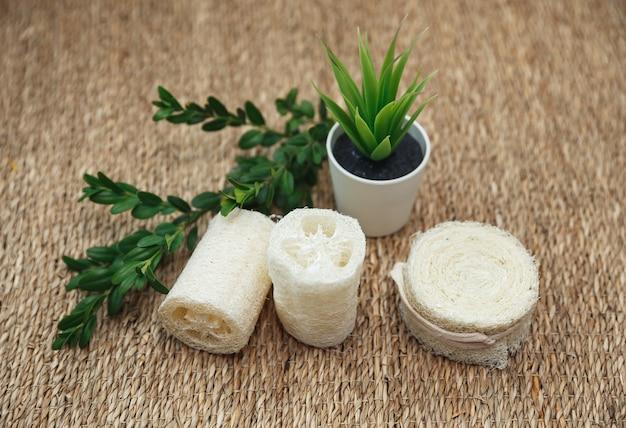 Verschillende soorten zero waste-sponzen. natuurlijke luffaspons met groene planten. milieuvriendelijke badkamer- en hygiëneaccessoires.