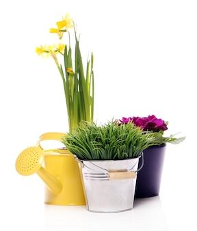 Verschillende tuinspullen