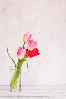 Verschillende verse kleurrijke tulpen in glas