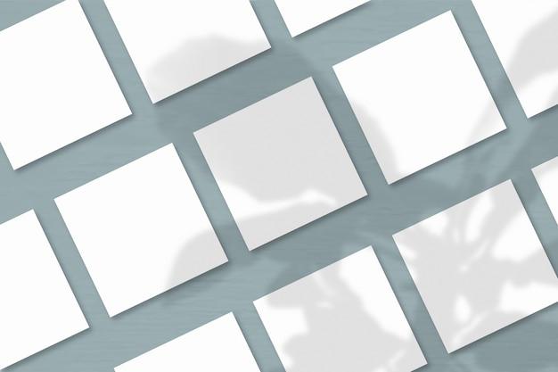 Verschillende vierkante vellen wit getextureerd papier tegen een grijze muurachtergrond. mockup met een overlay van plantschaduwen. natuurlijk licht werpt schaduwen van de boom van geluk. horizontale oriëntatie