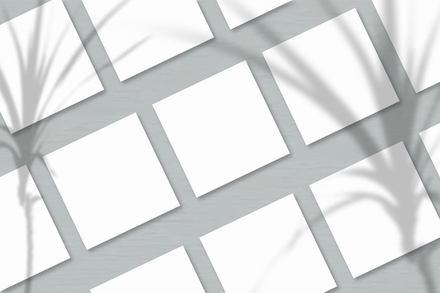 Verschillende vierkante vellen wit getextureerd papier tegen een grijze muurachtergrond. mockup met een overlay van plantschaduwen. natuurlijk licht werpt schaduwen van een tropische plant. horizontale oriëntatie
