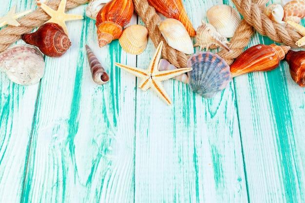 Verschillende zeeschelpen op achtergrond van de kleuren de houten lijst