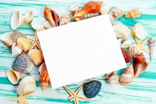 Verschillende zeeschelpen op kleuren houten tafel