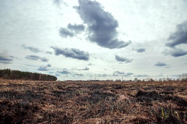 Verschroeide aarde, lentebranden