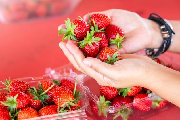 Verse aardbeien in de hand van de vrouw