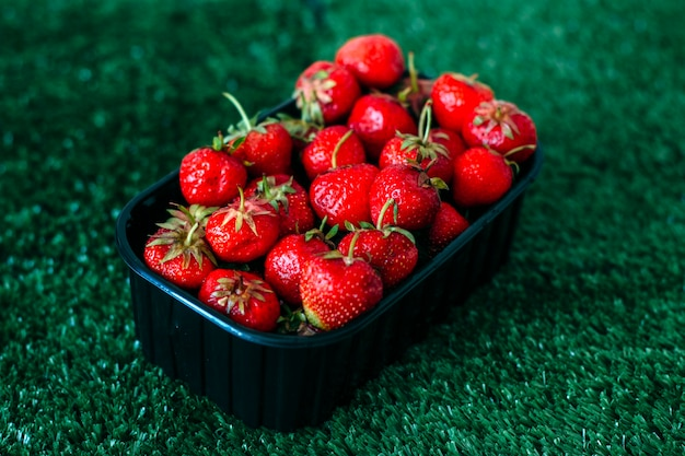 Verse aardbeien op het gras
