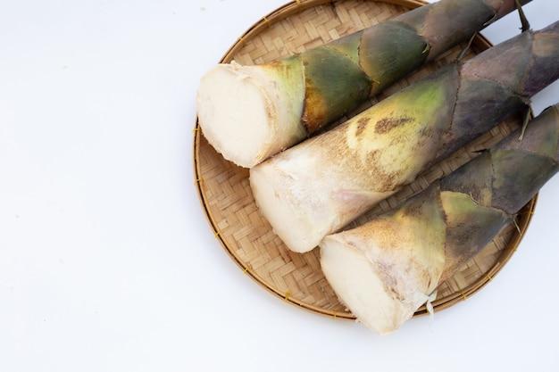 Verse bamboescheuten witte achtergrond.