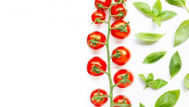 Verse basilicumbladeren met kersentomaten op wit.