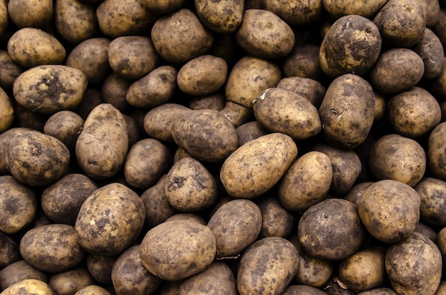 Verse biologische aardappelen verkocht op de markt