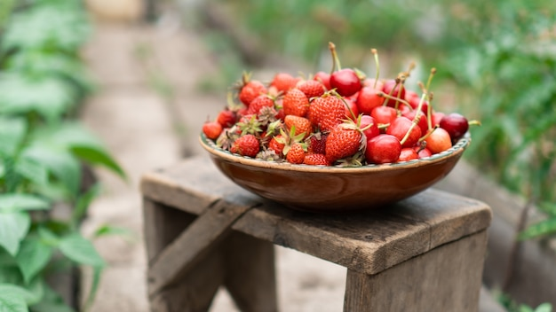 Verse biologische aardbeien en kersen uit eigen tuin