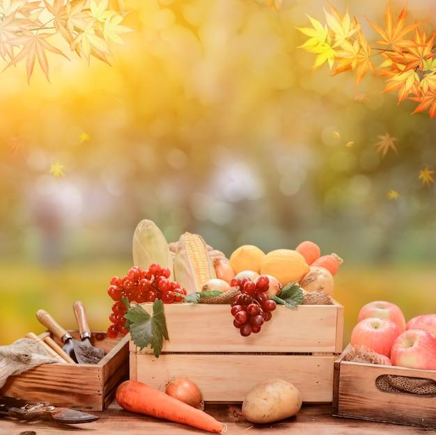 Verse biologische groenten voor het koken van salade. dieet en gezonde voeding. herfstoogst hoorn des overvloeds in het herfstseizoen.