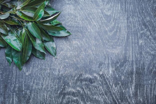 Verse biologische lychee bladeren op een rustieke houten ondergrond