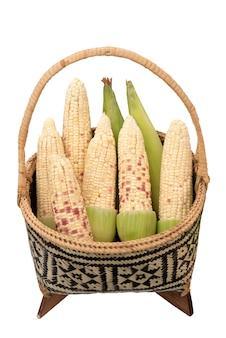 Verse biologische suikermaïs in mand geïsoleerd op witte achtergrond