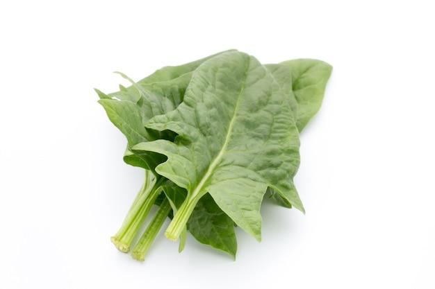 Verse bladeren van geïsoleerde spinazie