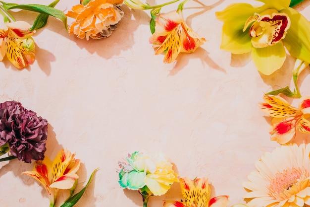 Verse bloemenlijst op roze achtergrond