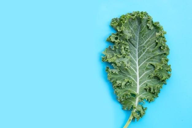 Verse boerenkool verlaat salade groente op blauw.