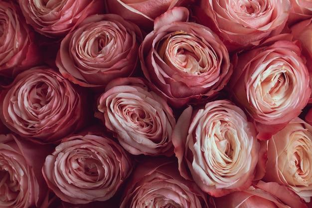 Verse bos roze rozen of pioenrozen in een bruidsboeketclose-up