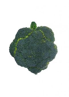 Verse broccoli die over wit worden geïsoleerd