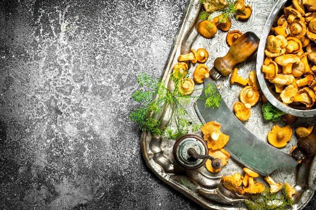 Verse cantharellenpaddestoelen met kruiden en een oud mes op een staalblad. op een rustieke achtergrond.
