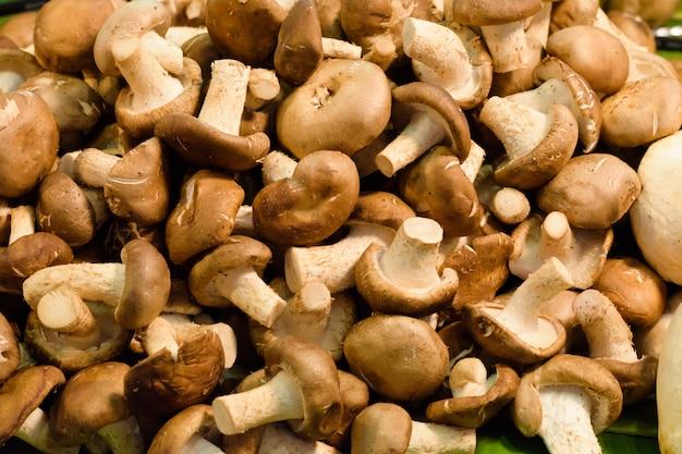 Verse champignonpaddestoelen. de natuur paddestoelgrondstof voor schoon en mager voedsel.